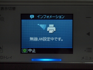 PB109253 (640x480) (300x225).jpg