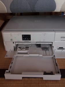PB129307 (480x640) (225x300).jpg